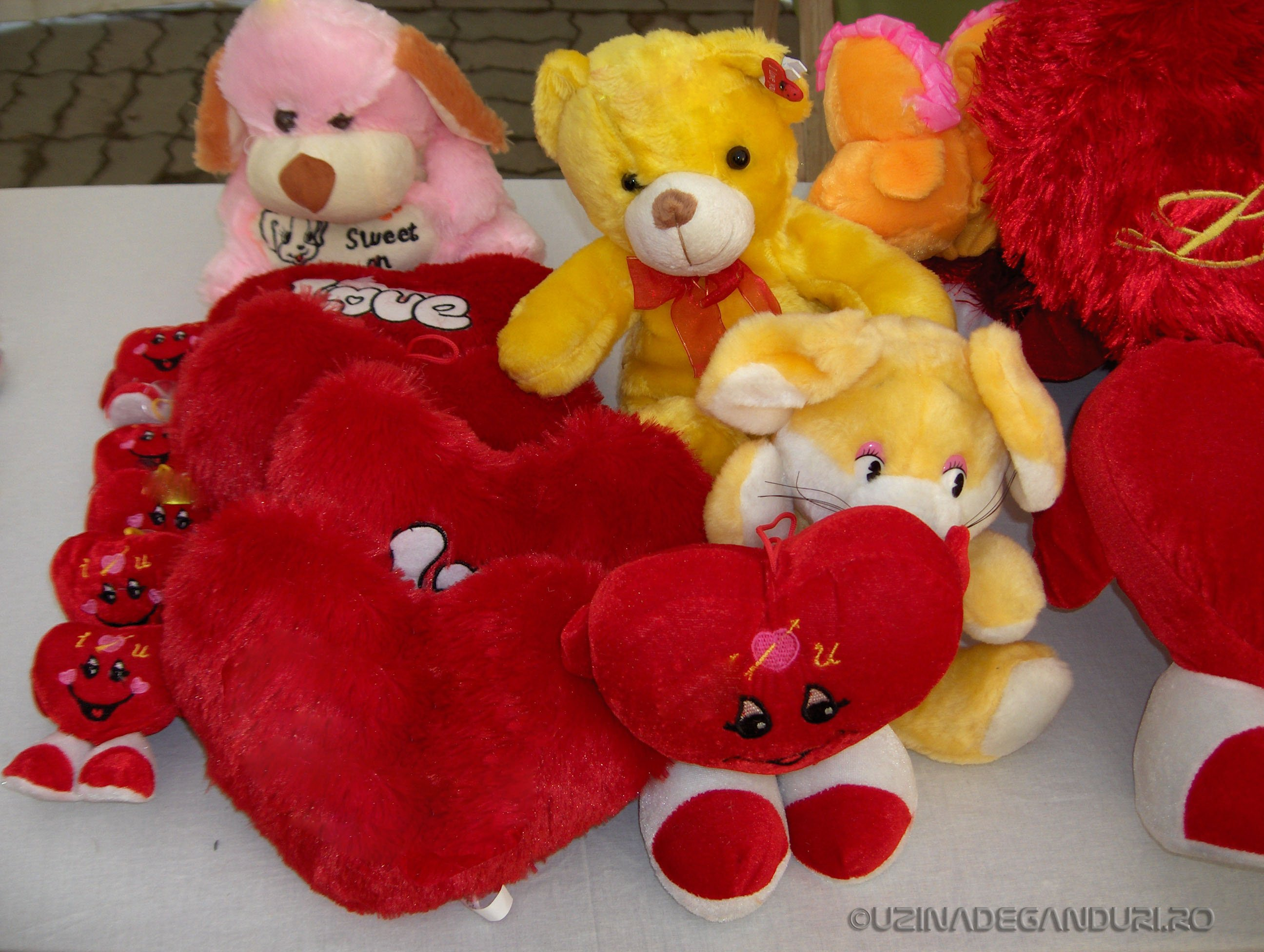 My Valentine`s day